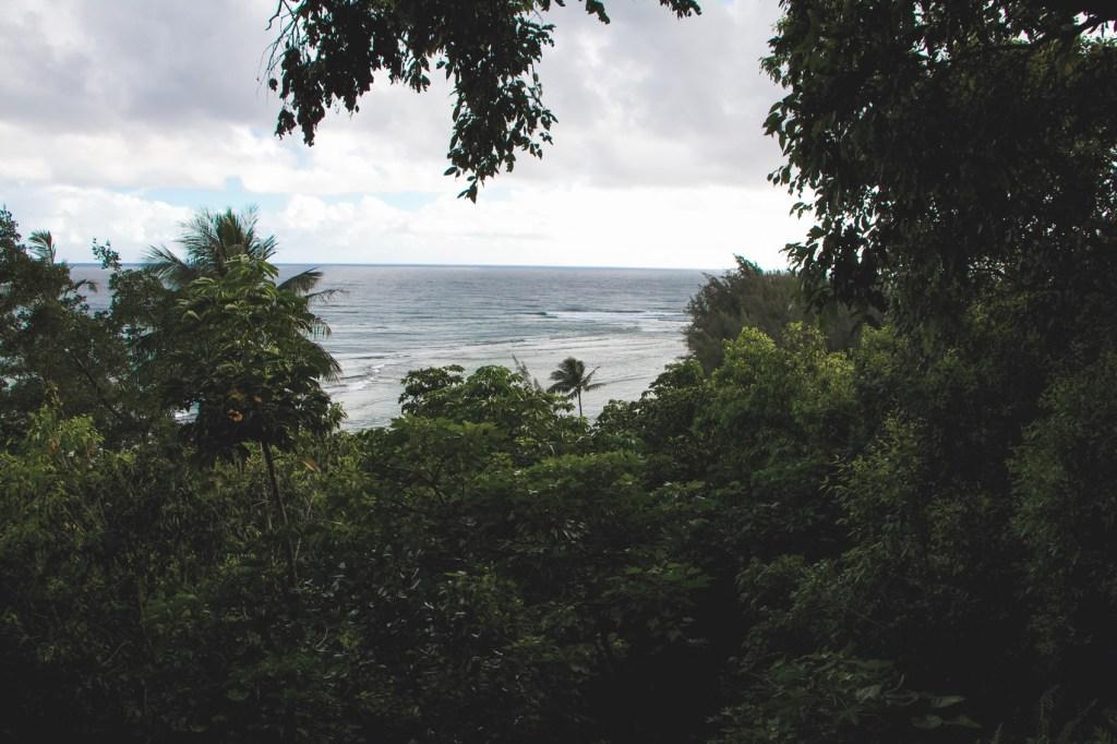 hanakapiai-falls-trail-2-of-37