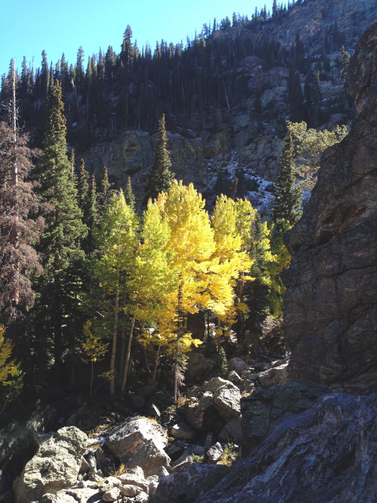 rocky-mountains-11-of-27