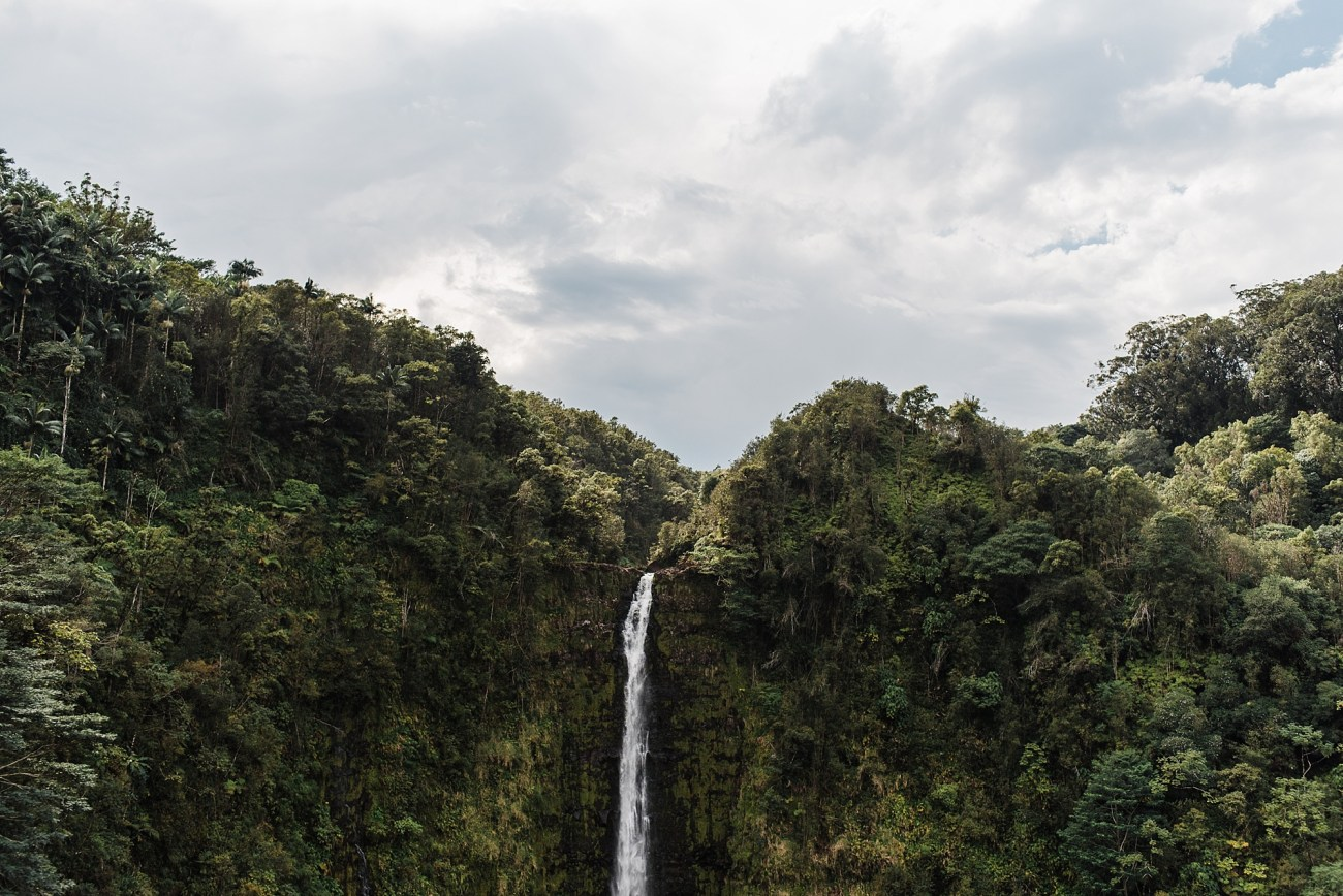 Photo of the top of Akaka Falls on the Big Island of Hawaii taken by Laura Lango of Forthright Photo