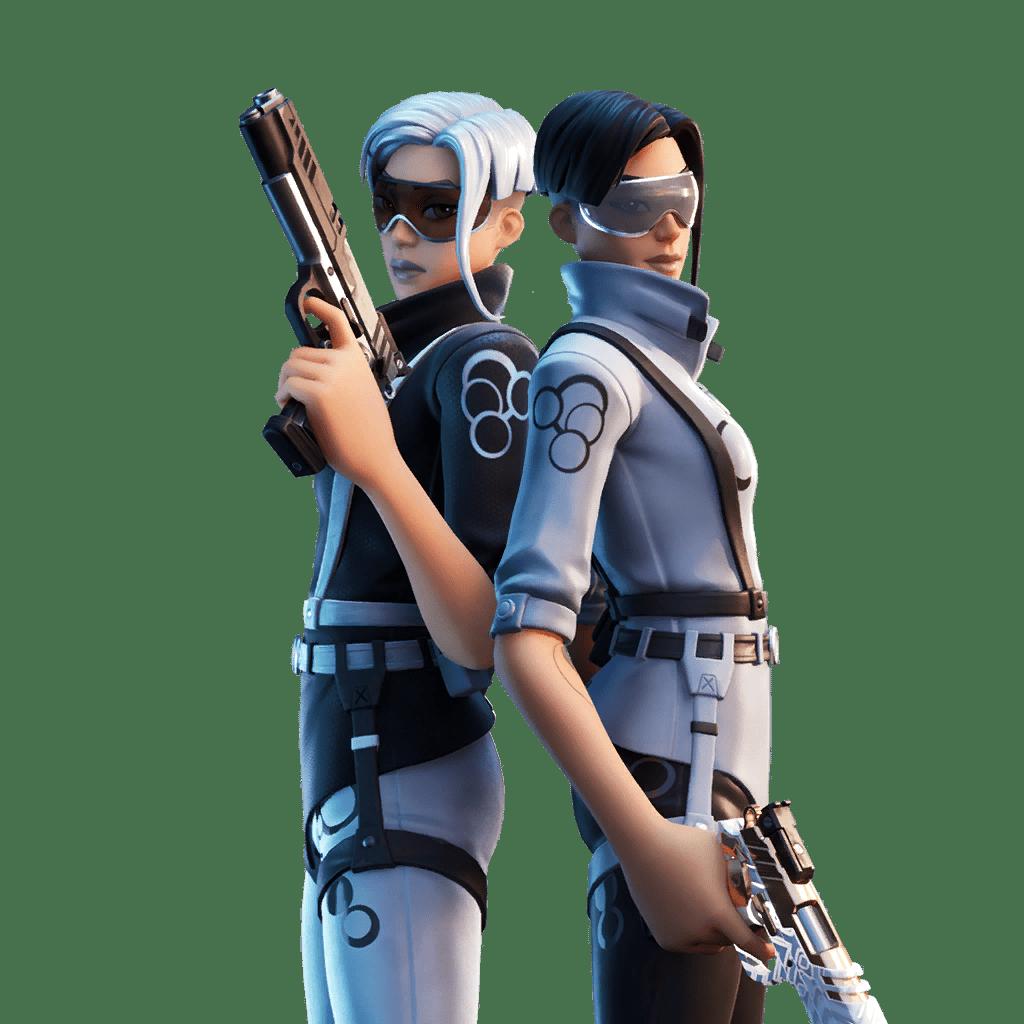 Fortnite v12.10 Leaked Skin - Echo