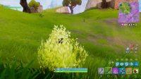 bush-screenshot-5
