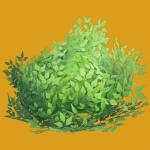 Bush Skin