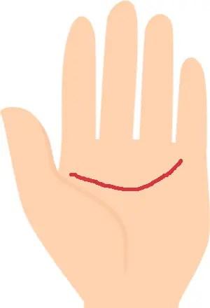 仕事運のある手相⑧クリエイティブな仕事向きの証!小指下へカーブする知能線