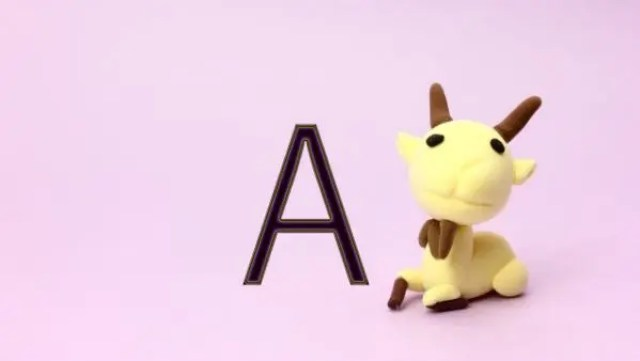 山羊座A型