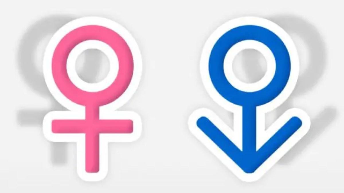 性別 男女