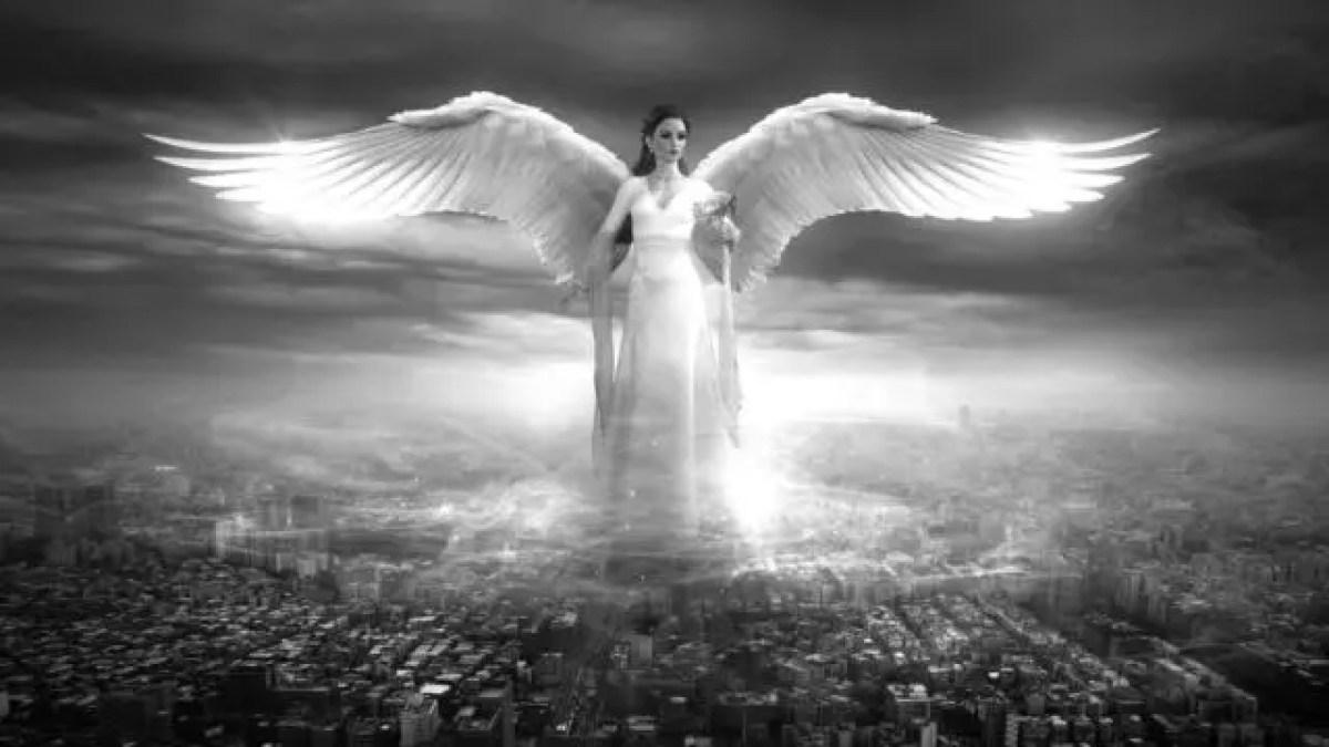 神秘 天使