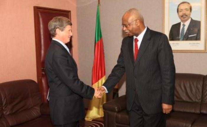 Development Partners of Cameroon