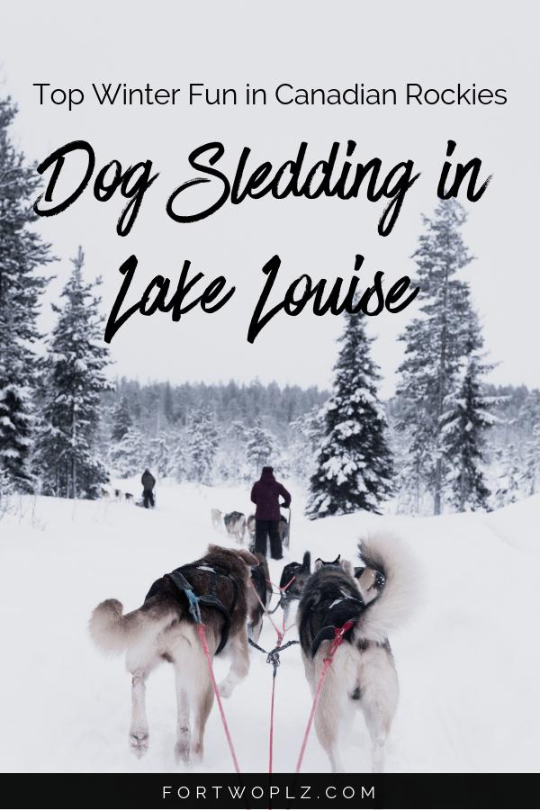 Dog Sledding Banff Lake Louise