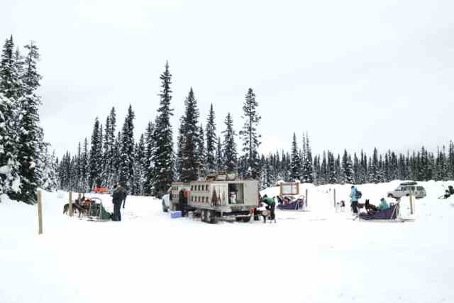 Kingmik dog sledding tour, Lake Louise, Banff