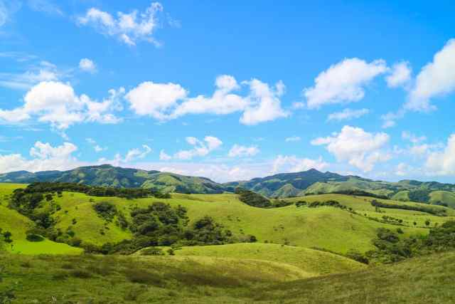 Unforgettable things to do in Costa Rica in November Monteverde Cloud Forests