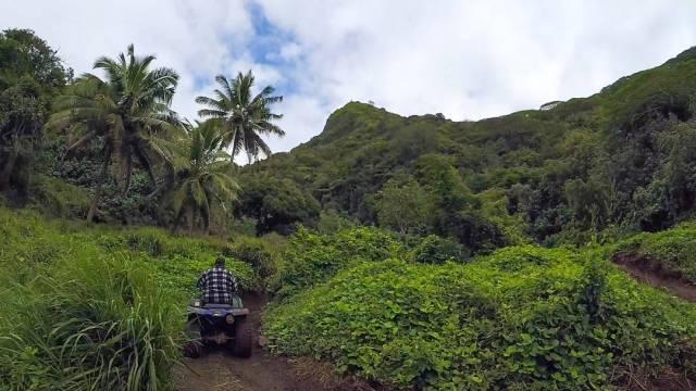 Quad Tour Rarotonga