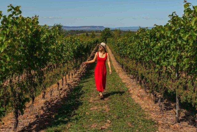 Luckett Winery Wolfville Nova Scotia Holidays
