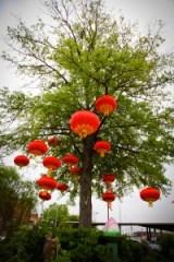 A photo of Shreveport's Asian Gardens