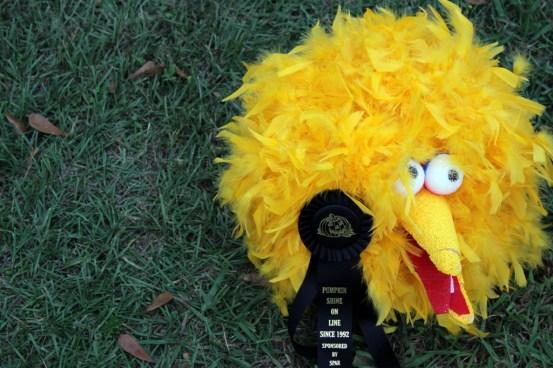 Awkward Big Bird gets a ribbon!