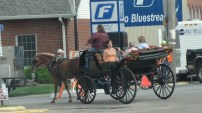 In one of the small towns we drove through in Illinois, we were behind a horse and carriage.