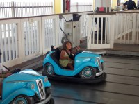 Bumper Car Mystery -- 1st Time Ever!