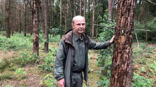 Thomas Weber, Vorstand des Waldbesitzerverbandes