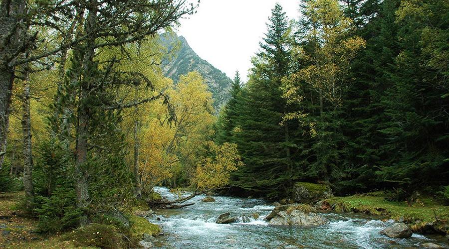 El Parc Natural de l'Alt Pirineu - Marc Garriga