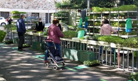Gent gran comprant al mercat setmanal de la Seu