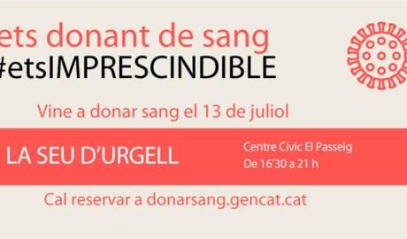Cartell de la campanya de donació de sang a la Seu d'Urgell
