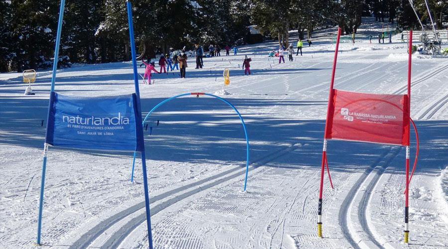 Alumnes en una jornada d'esquí escolar a Naturlandia