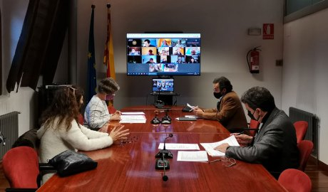 Una sessió del Consell Comarcal de l'Alt Urgell amb bona part dels membres participant telemàticament