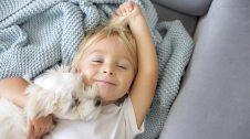 Els gossos poden ser els millors amics dels infants