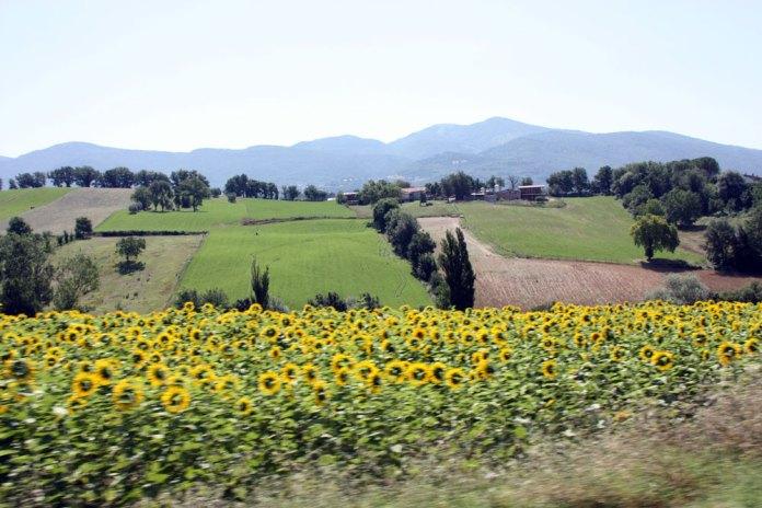 Проживание на итальянской ферме