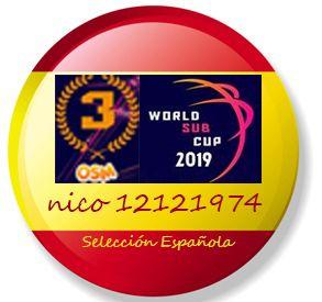 nico12121974wsc21.jpg