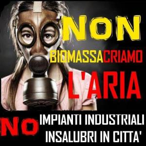 no-biomasse