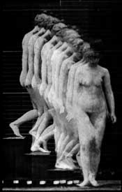 mini_muybridge3