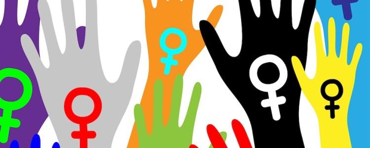 Participação política das mulheres e construção do movimento