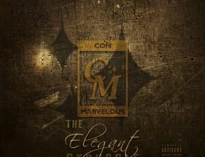 ✨ It's Here: Con Marvelous – The Elegant Struggle ✨