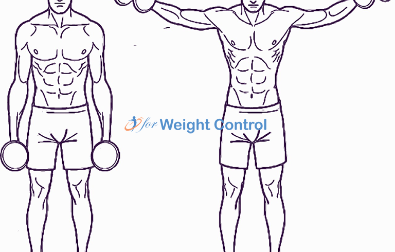 forweightcontrol lateral raise - For Weight Control