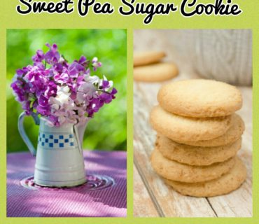 Sweet Pea Sugar Cookie fragrance
