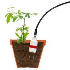 agricultura inteligente sensor