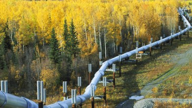 Photo of Nearly 400,000 Gallons of Oil Spilled from Keystone Pipeline