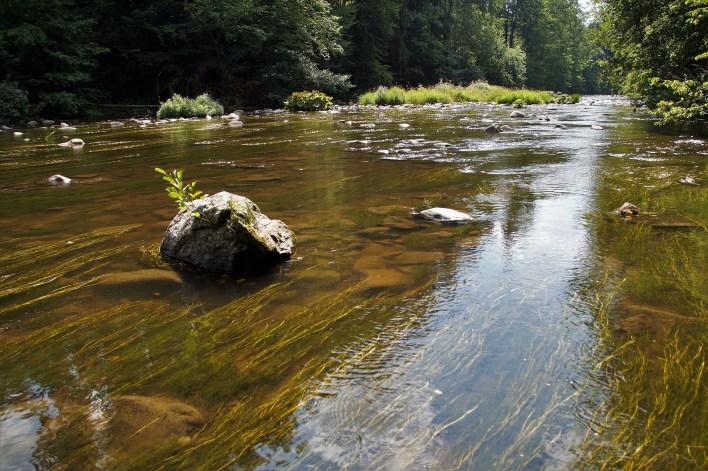 river-4422821_1920.jpg