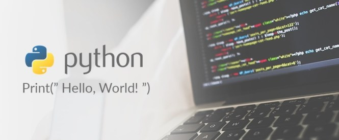python-banner