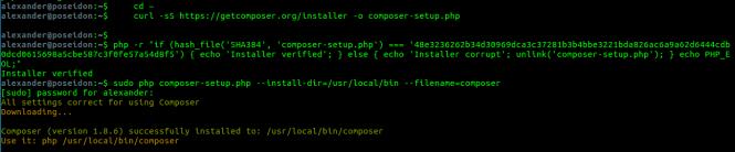 composer install commands