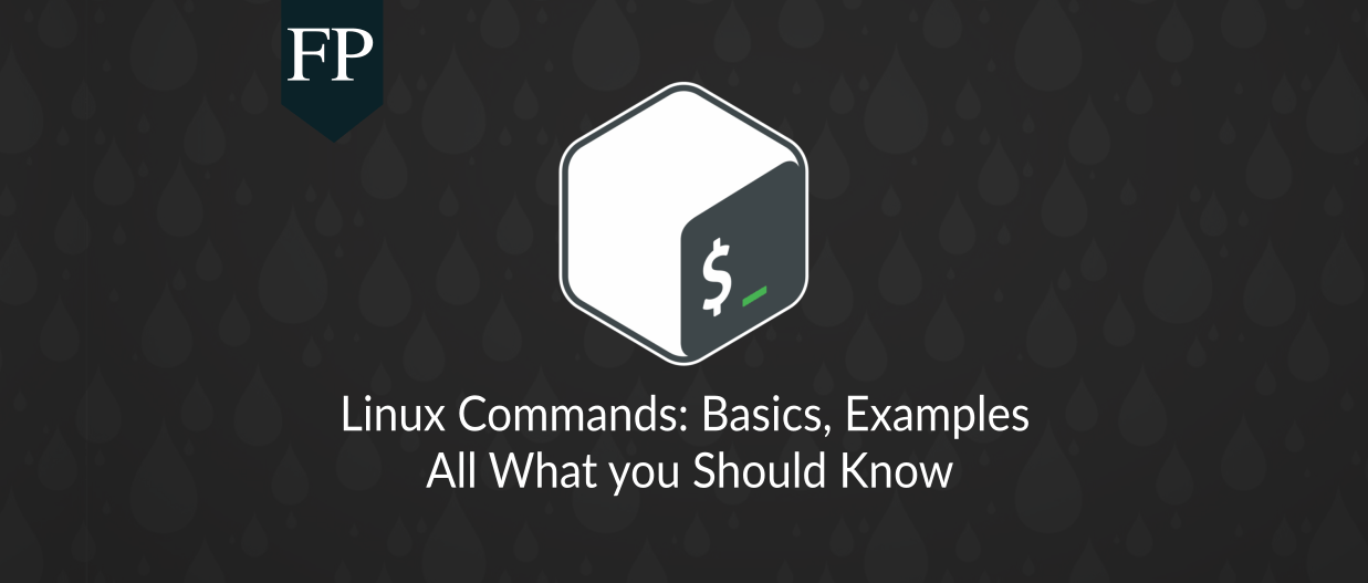Linux Command Line Basics & Examples