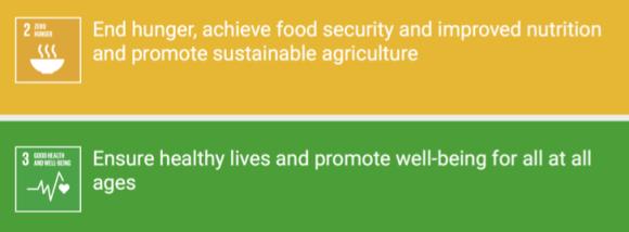 SDGs2-3