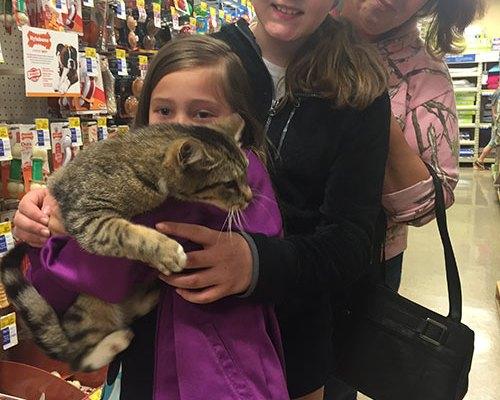 Cat Adopted
