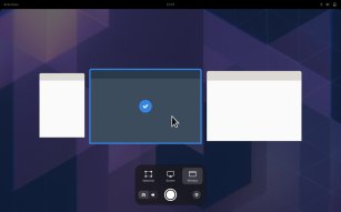 screenshot-window