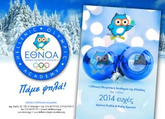 ETHNOA-CARD-2014_pdf