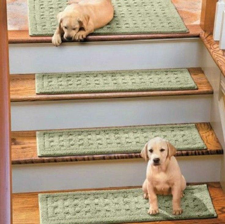 Stair Treads Carpet Non Slip Ideas On Foter | Best Non Slip Carpet For Stairs | Wood | Bullnose Carpet | Tile | Stair Runner | Wood Stairs