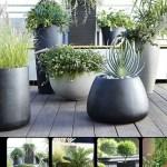 Large Black Planter Ideas On Foter
