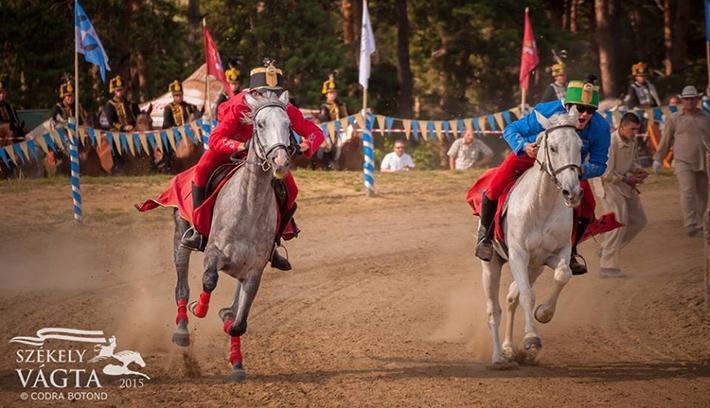 Gyergyószárhegy lovasa nyerte az idei Székely Vágtát