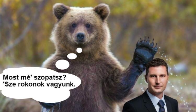 Tánczos Barna vs Barna Medve