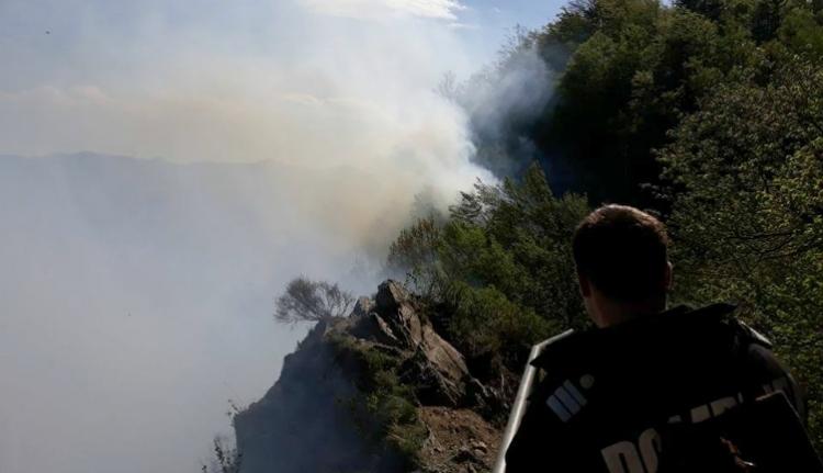 Helikopterrel oltották a nemzeti parkban kigyulladt tüzet
